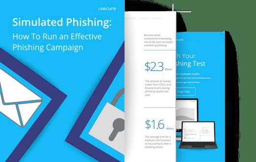 Simulated phishing, 3 page mockup